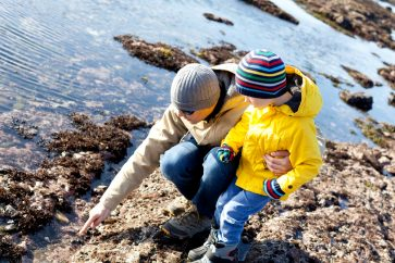 father and son exploring tidepools